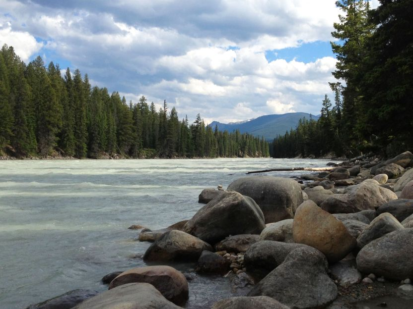 Athabasca River views beside Wapiti Campground